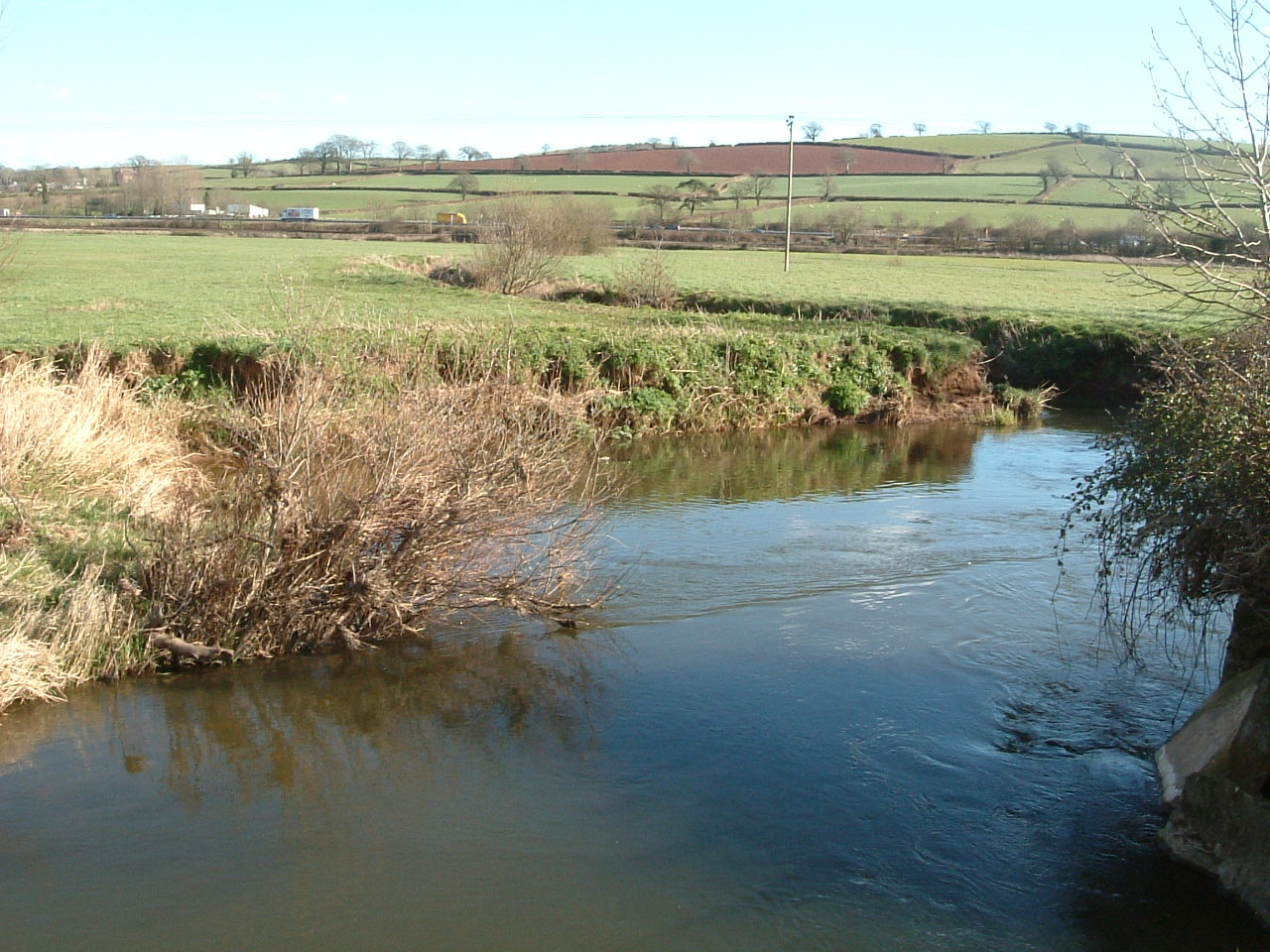 Eroded river bank