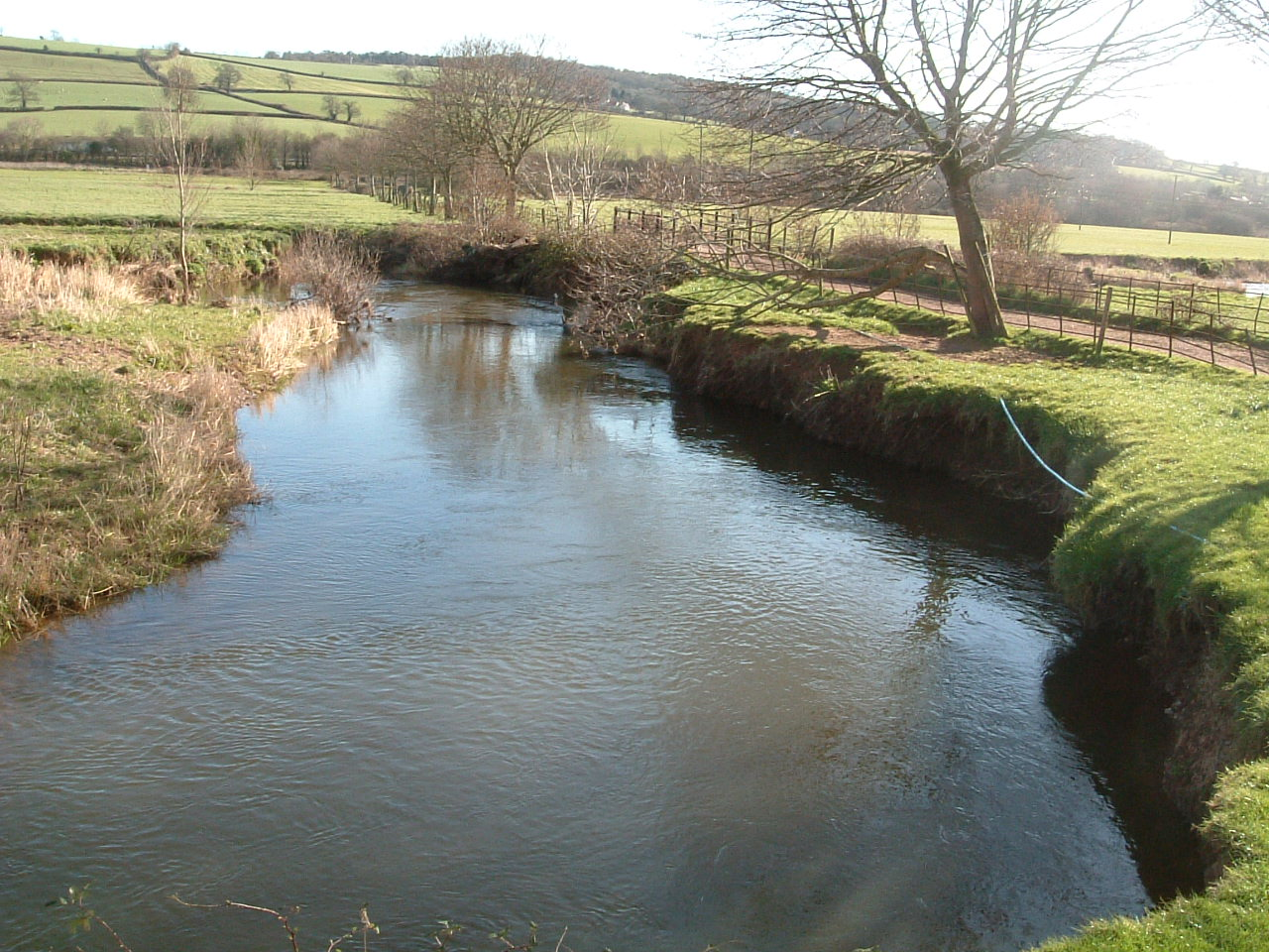 Eroded riverbank